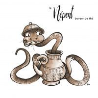 Carte Népent